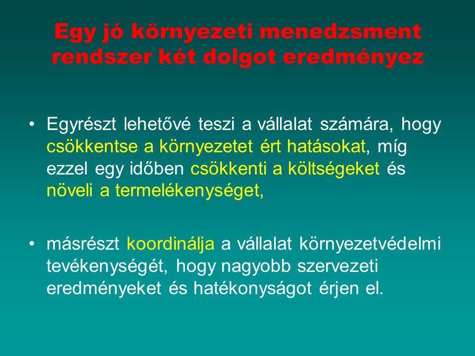 menedzsment szempontú rendszerek)