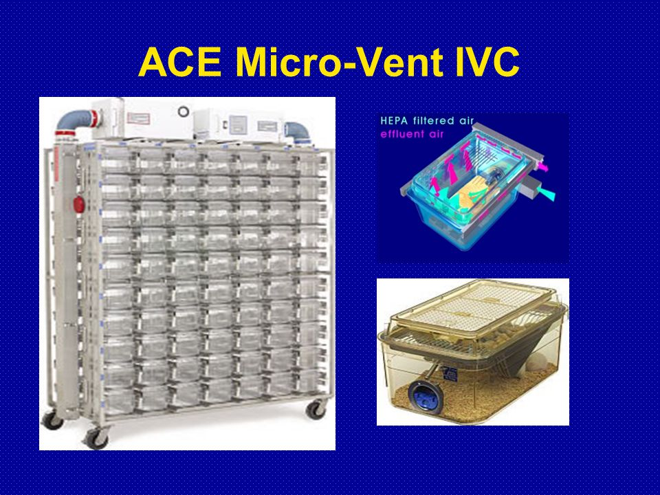 ACE Micro-Vent IVC