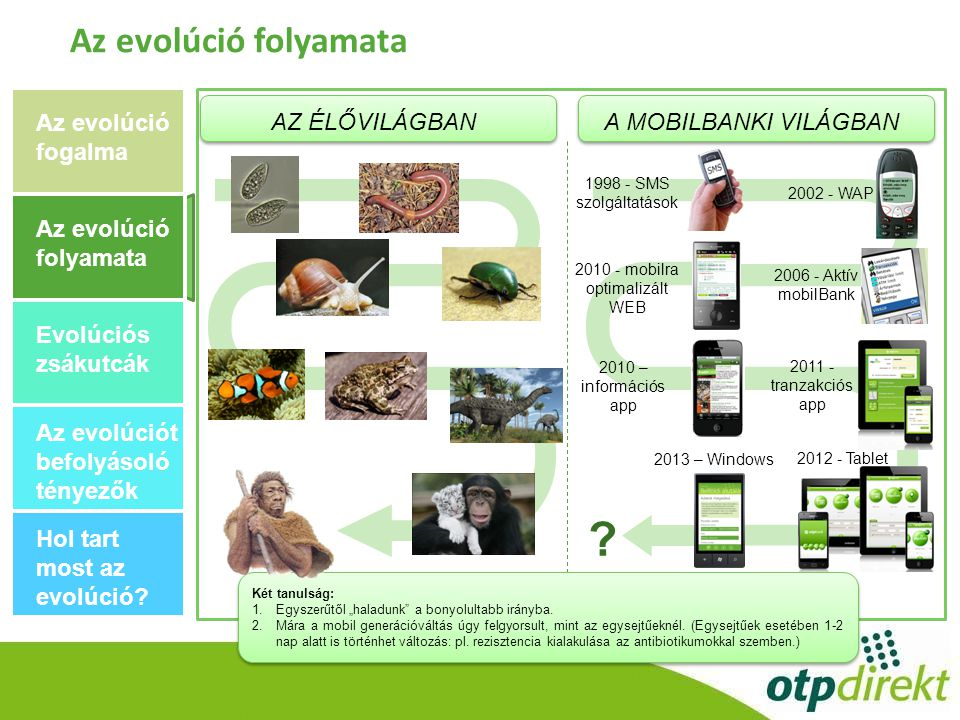 mobilra optimalizált WEB