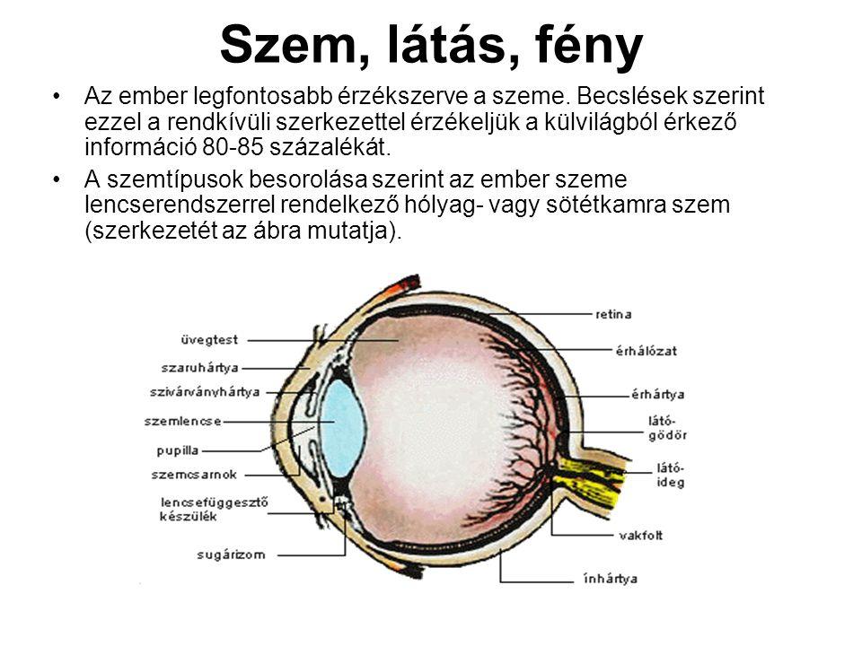szem és látás téma)