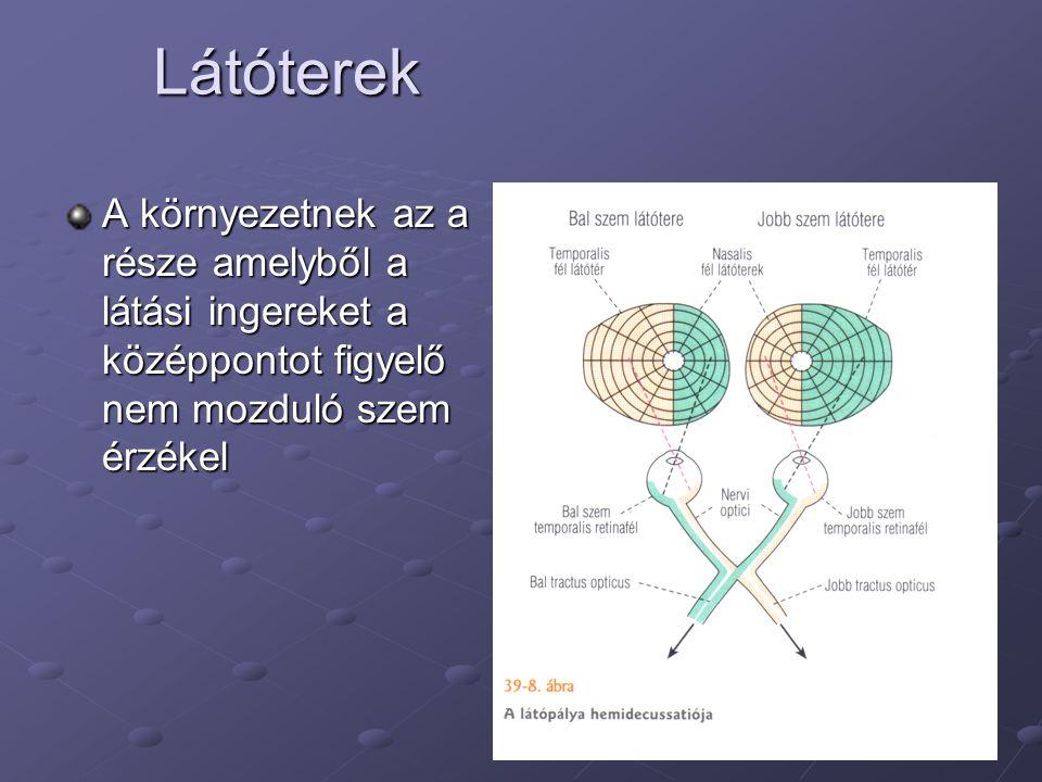 a látás alapjai és funkciói betűk a szemvizsgálaton