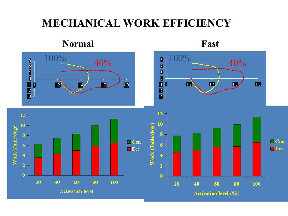 MECHANICAL WORK EFFICIENCY
