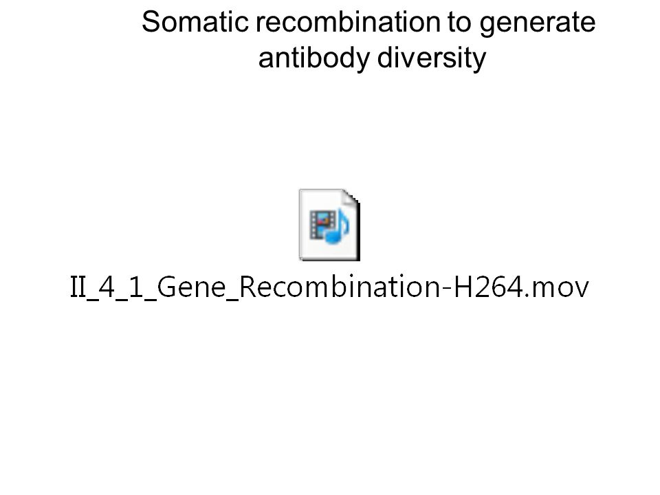 Somatic recombination to generate