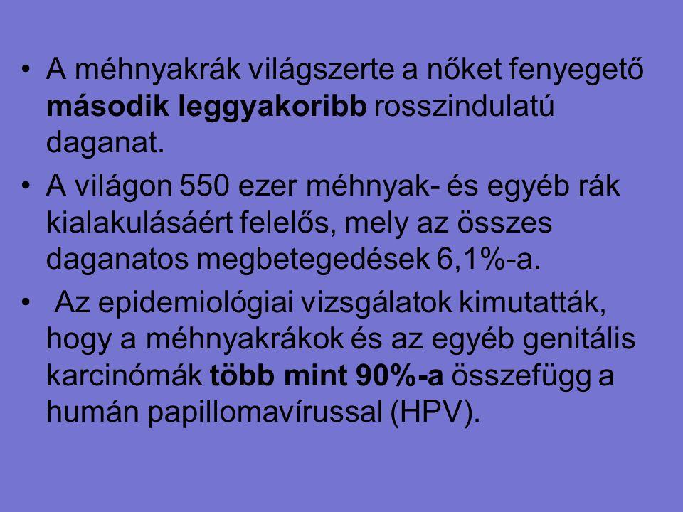 kapcsolatok a papillomavírussal)