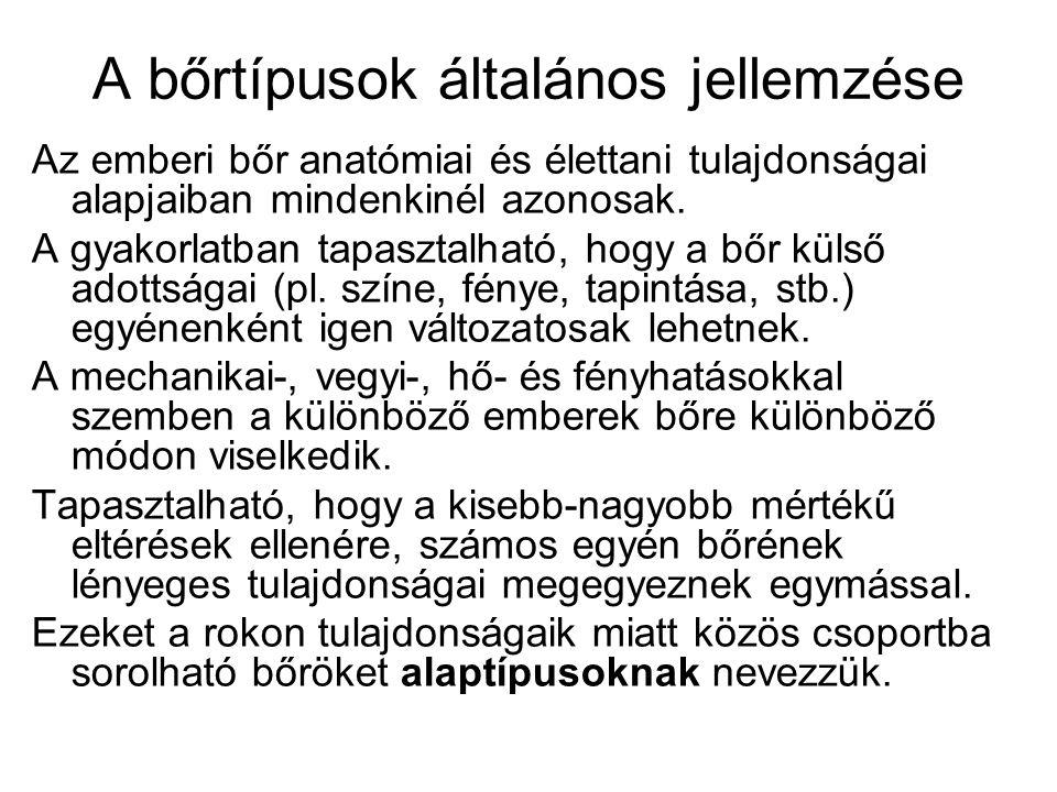 A BŐRTÍPUSOK JELLEMZÉSE - ppt letölteni a0facfb887