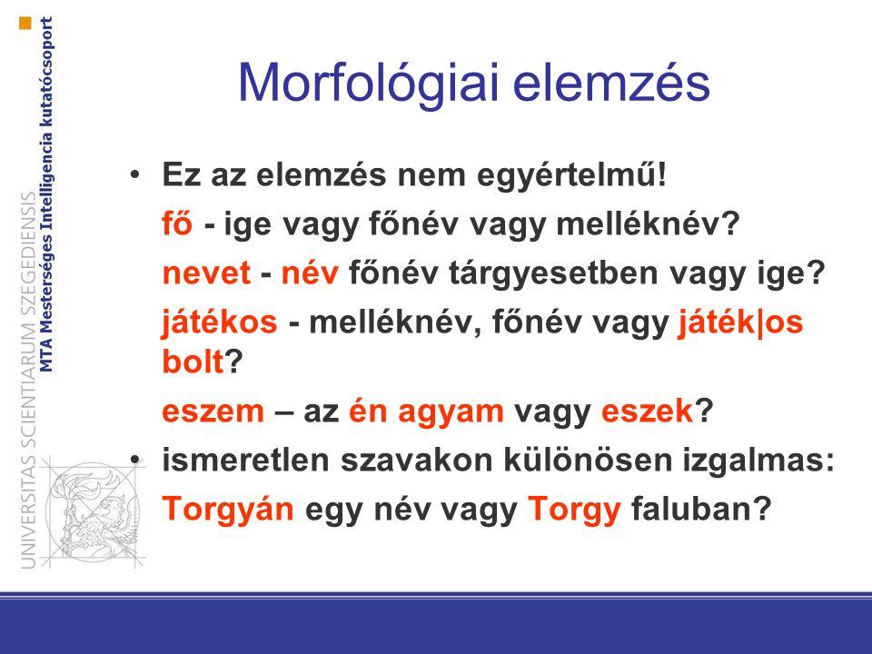 látás morfológiai elemzése)