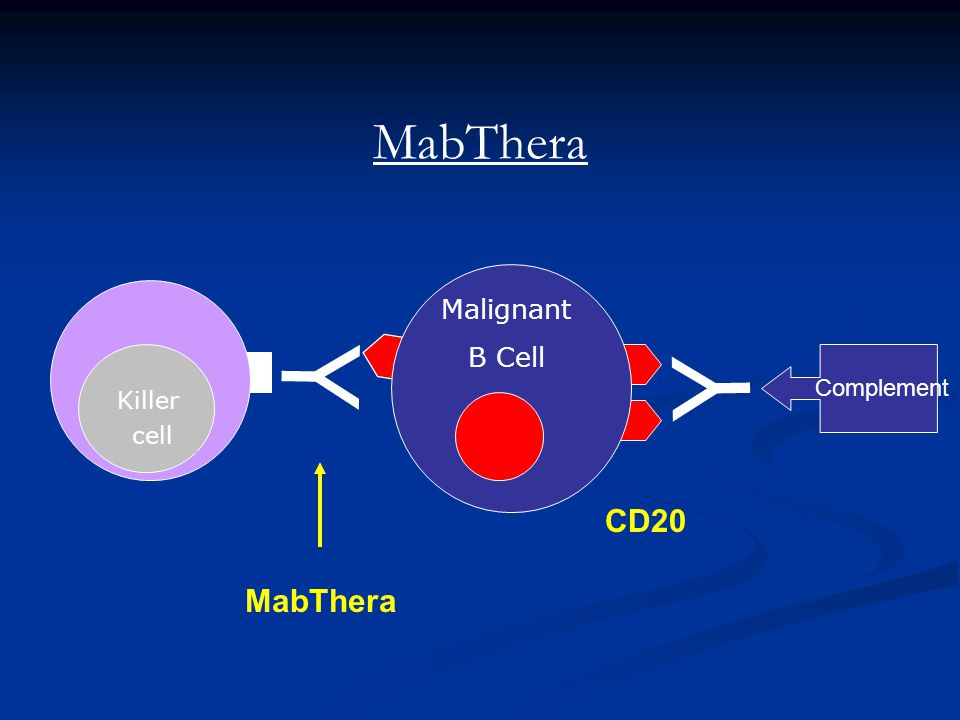 MabThera Malignant B Cell Y Y Complement Killer cell CD20 MabThera 6