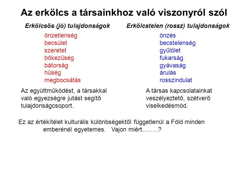 platyhelminthes tulajdonságok listája)