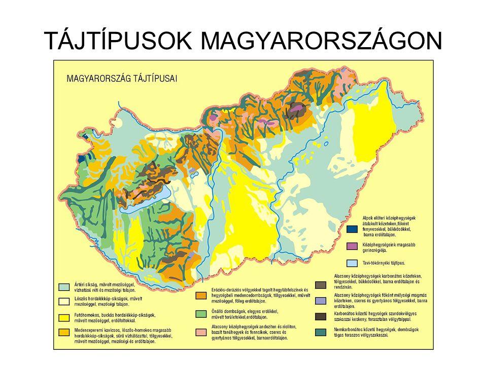 Magyarország tájai A Kisalföld - ppt letölteni cd1c4bb48c