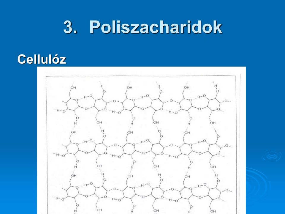 Poliszacharidok Cellulóz