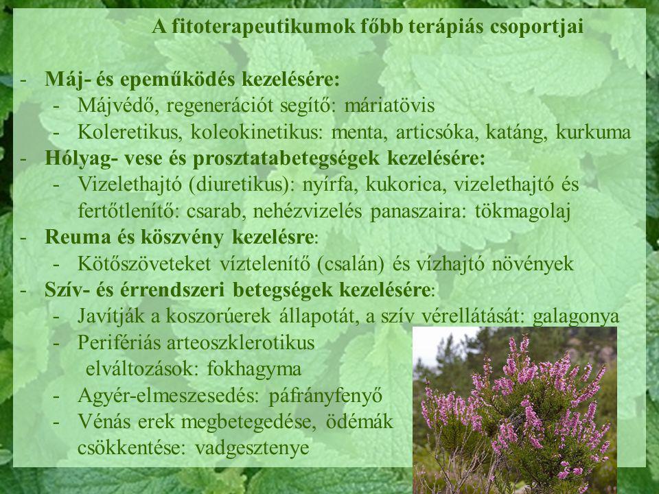 Diuretikus gyógynövények prosztatitisekkel)