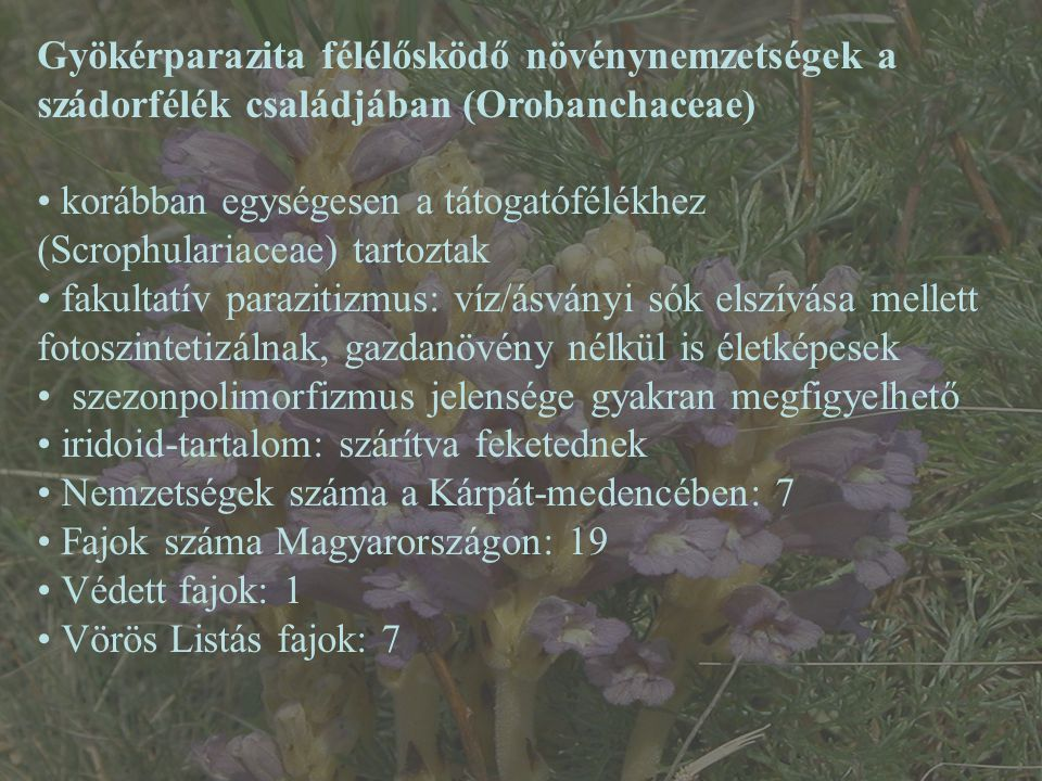 a paraziták által élő és szaporodó növények)