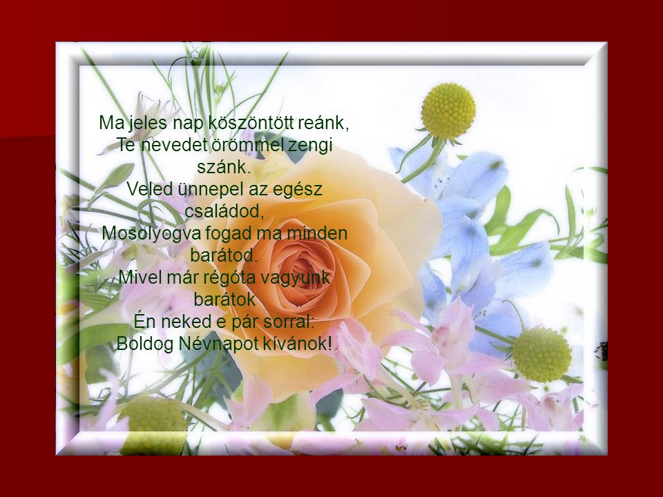 sok boldog névnapot kívánok néked most Áldott Névnapot Kívánok Neked   MuzicaDL sok boldog névnapot kívánok néked most