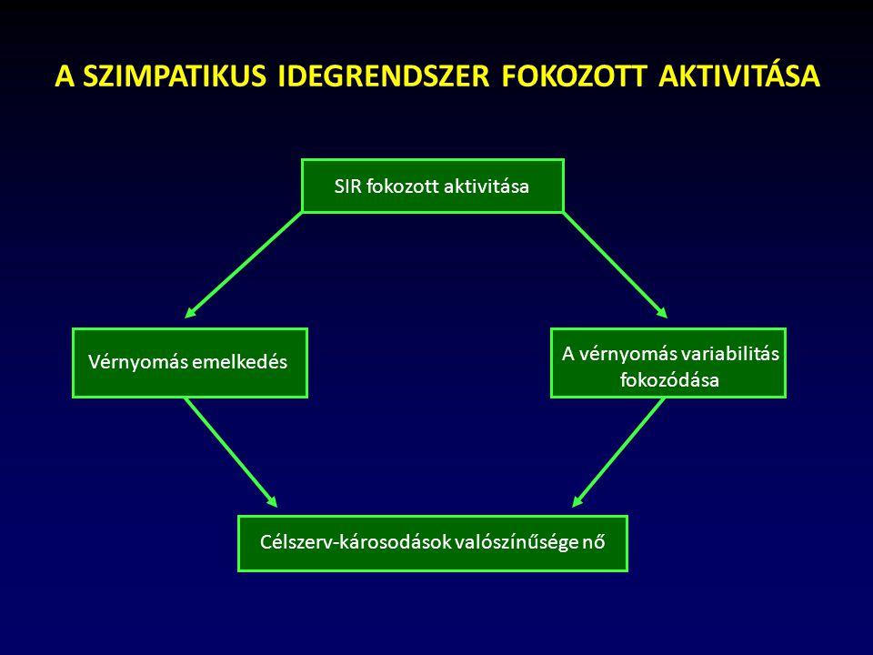 Autonóm idegrendszer – Wikipédia