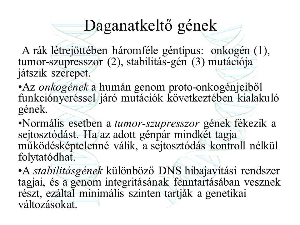 genetikai rák ppt