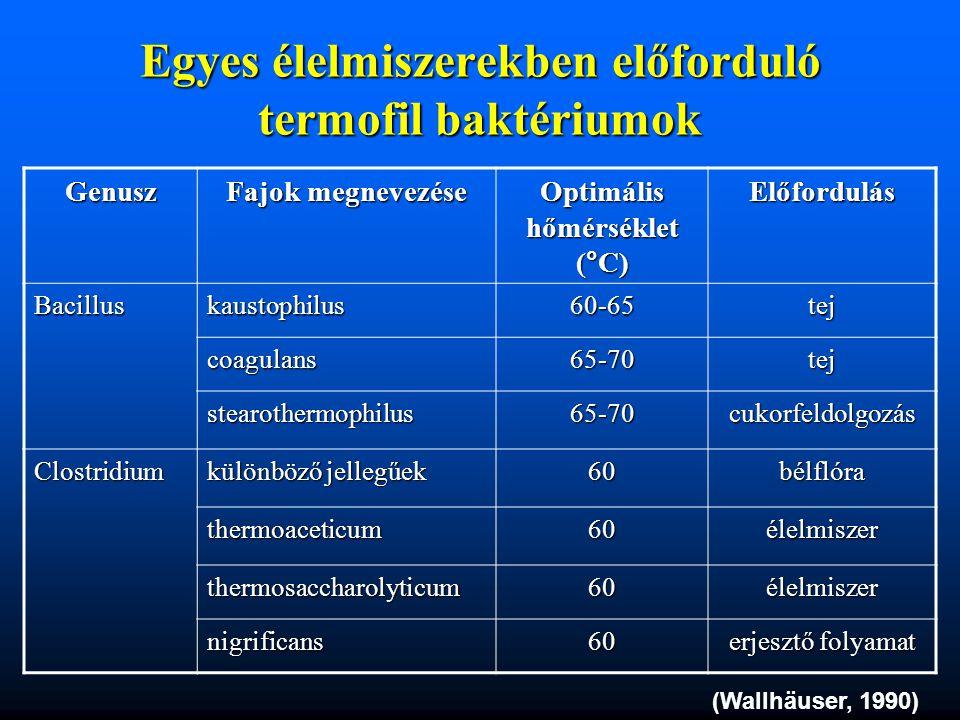 termofil baktériumok