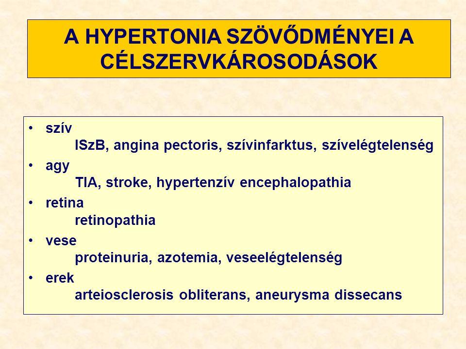 hipertónia patogenezise)