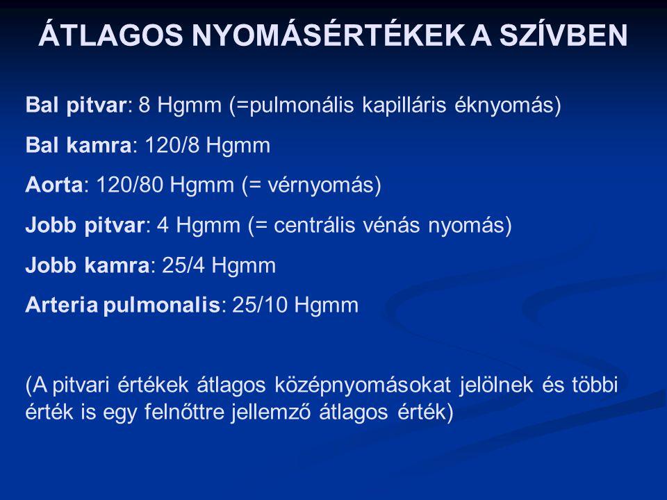 erek hipertónia káros gyógyszerek magas vérnyomás ellen