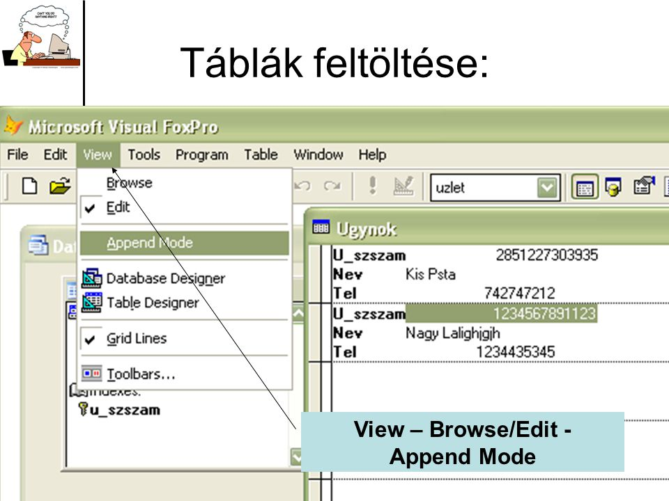 View – Browse/Edit - Append Mode