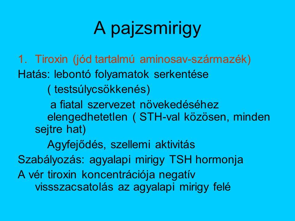Pajzsmirigy betegségekkel és a pajzsmirigy vizsgálattal kapcsolatos kérdések - Bejegyzések