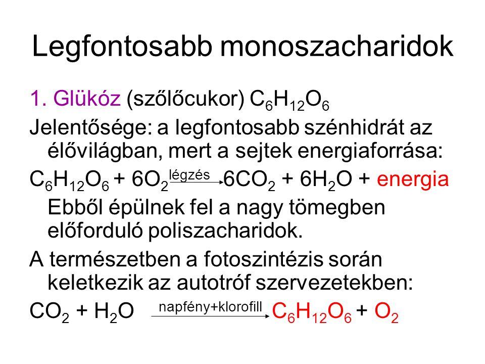légzés szénhidrátok