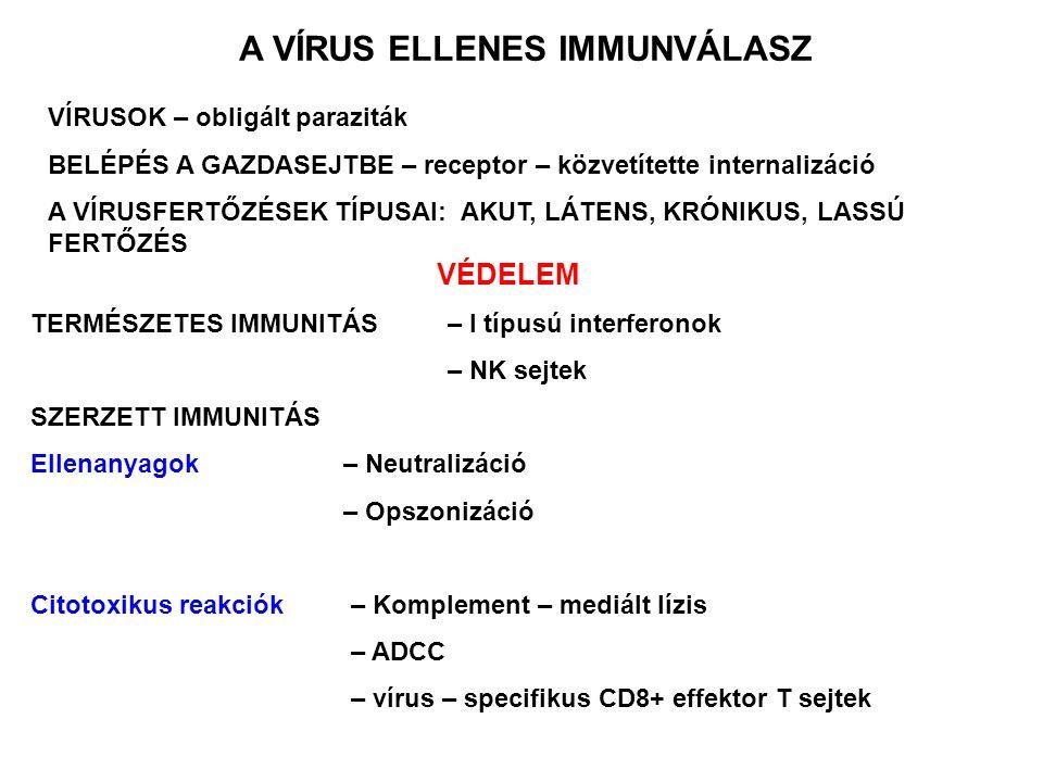 ascaris elleni antitestek