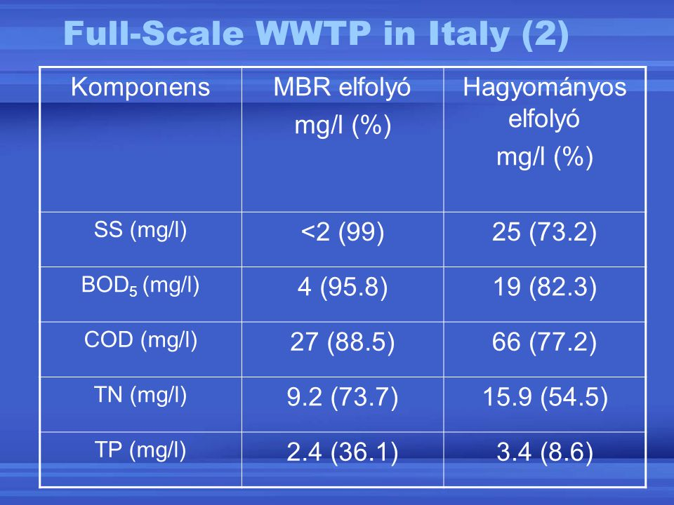 Full-Scale WWTP in Italy (2)