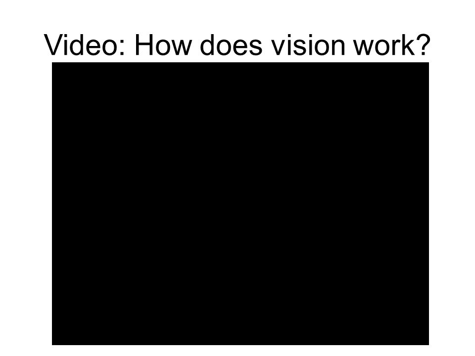 Video: How does vision work