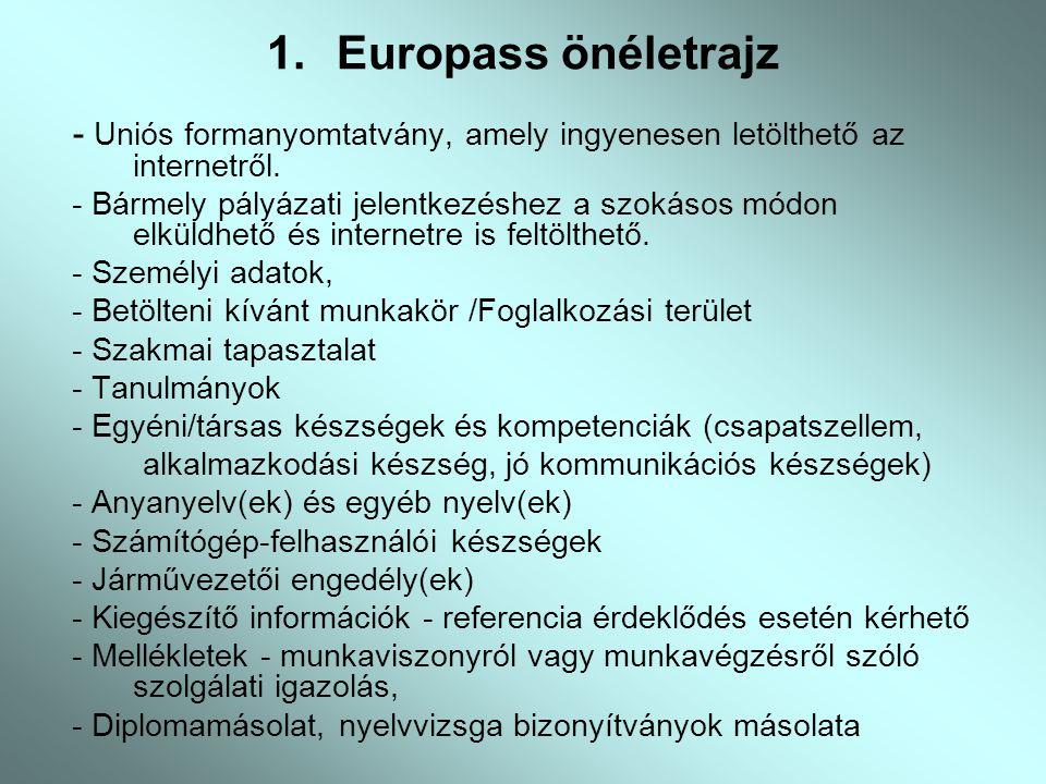 önéletrajz munkával kapcsolatos készségek EUROPASS.   ppt letölteni önéletrajz munkával kapcsolatos készségek