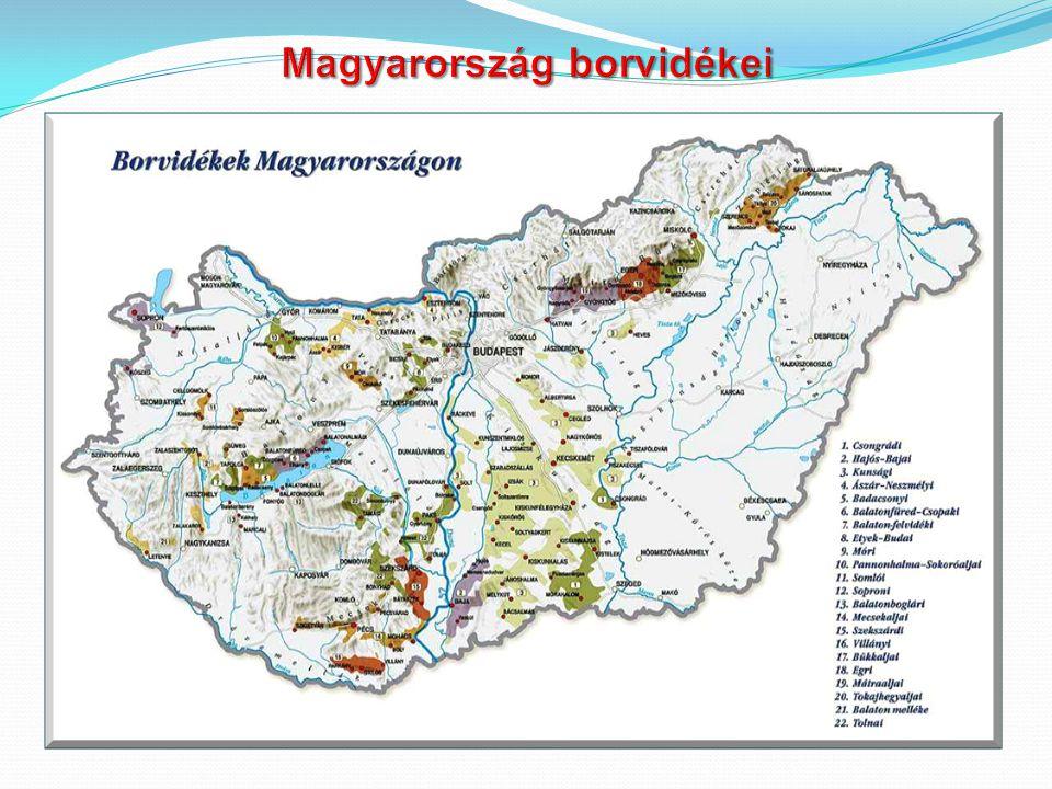 Magyar Borvidékek Térkép