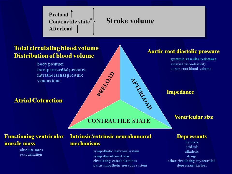 sympathoadrenal rendszer hipertónia