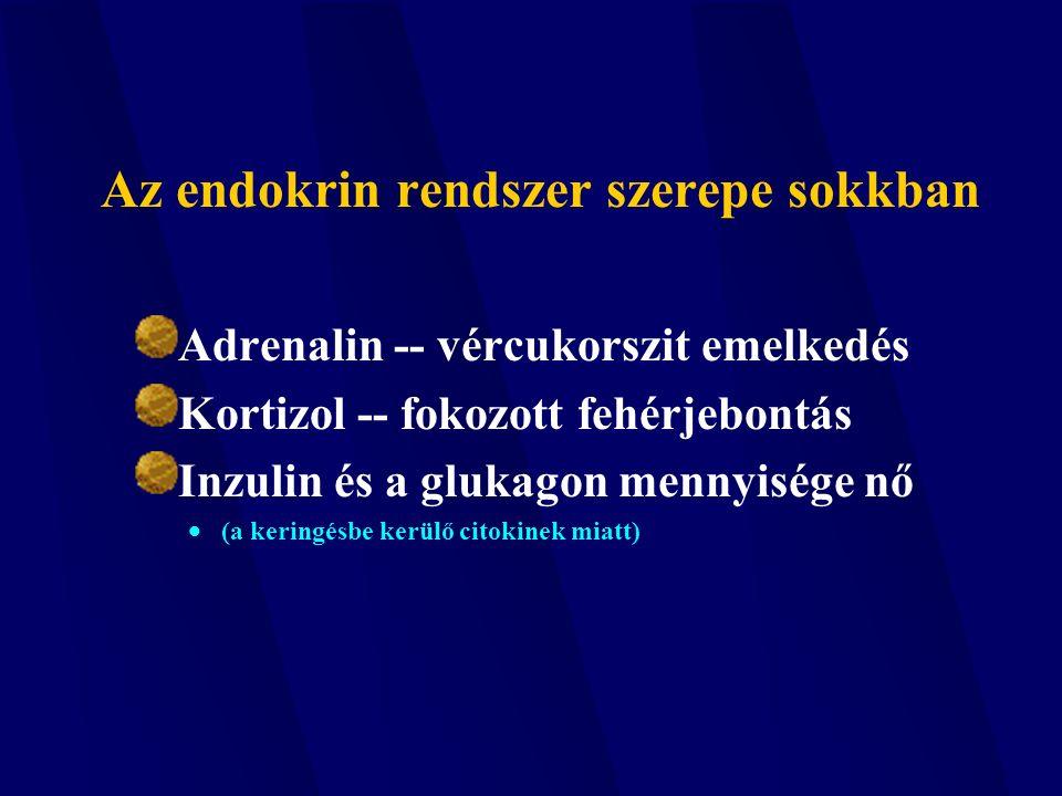 sympathoadrenal rendszer hipertónia)