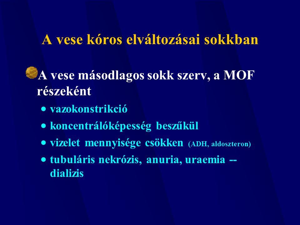 vizeletminta mennyisége)